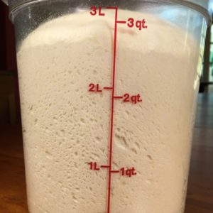 Dough Rising Container